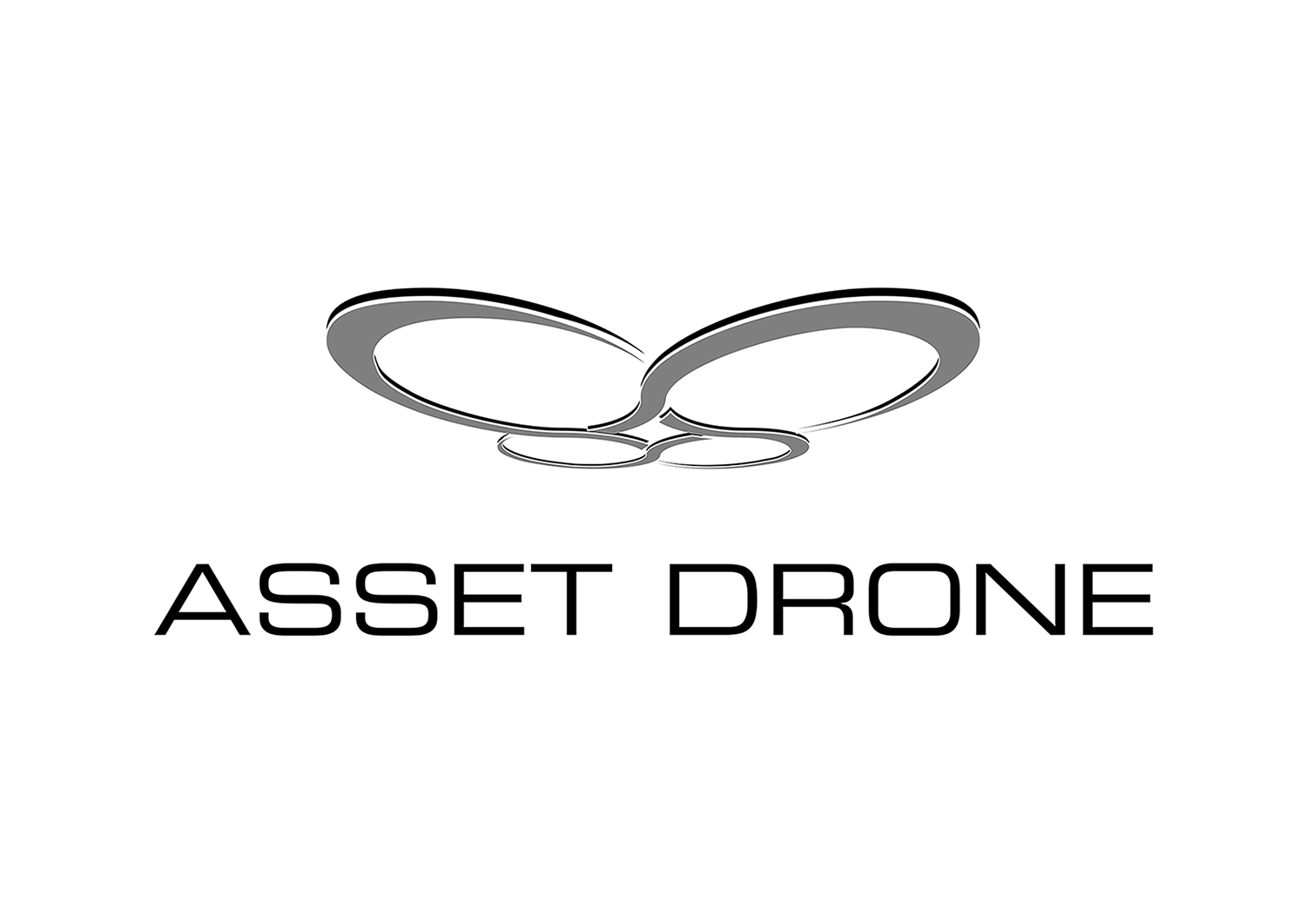 Asset Drone
